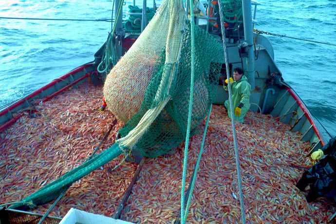 quejas por desechos de pesca son arrojados al sur de las