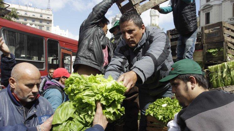 Productores donarán 20 mil kilos de verduras a jubilados