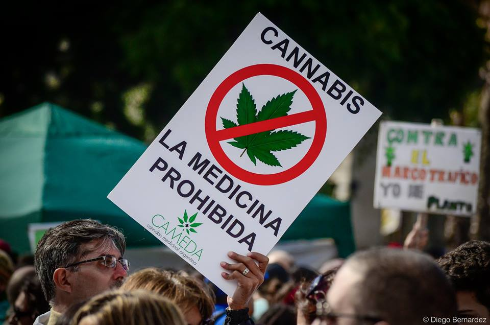 Cannabis medicinal: Se impuso una ley conservadora